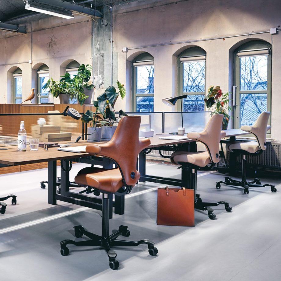 HAG Capisco 8106 chaise de bureau ergonomique luxembourg 3